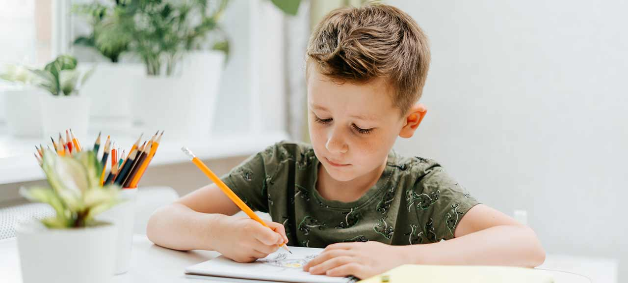 distance-learning-online-education-caucasian-smile-kid-boy-studying-at-home-with-book-draw-in-notepad_t20_3dQ6oN-2